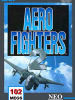Aero Fighters 2 — 1994 at Barcade® in Newark, New Jersey | arcade video game